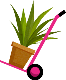 Plant Installation Icon