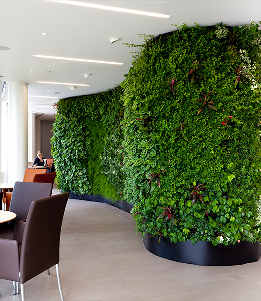 Living & Replica Plant Walls